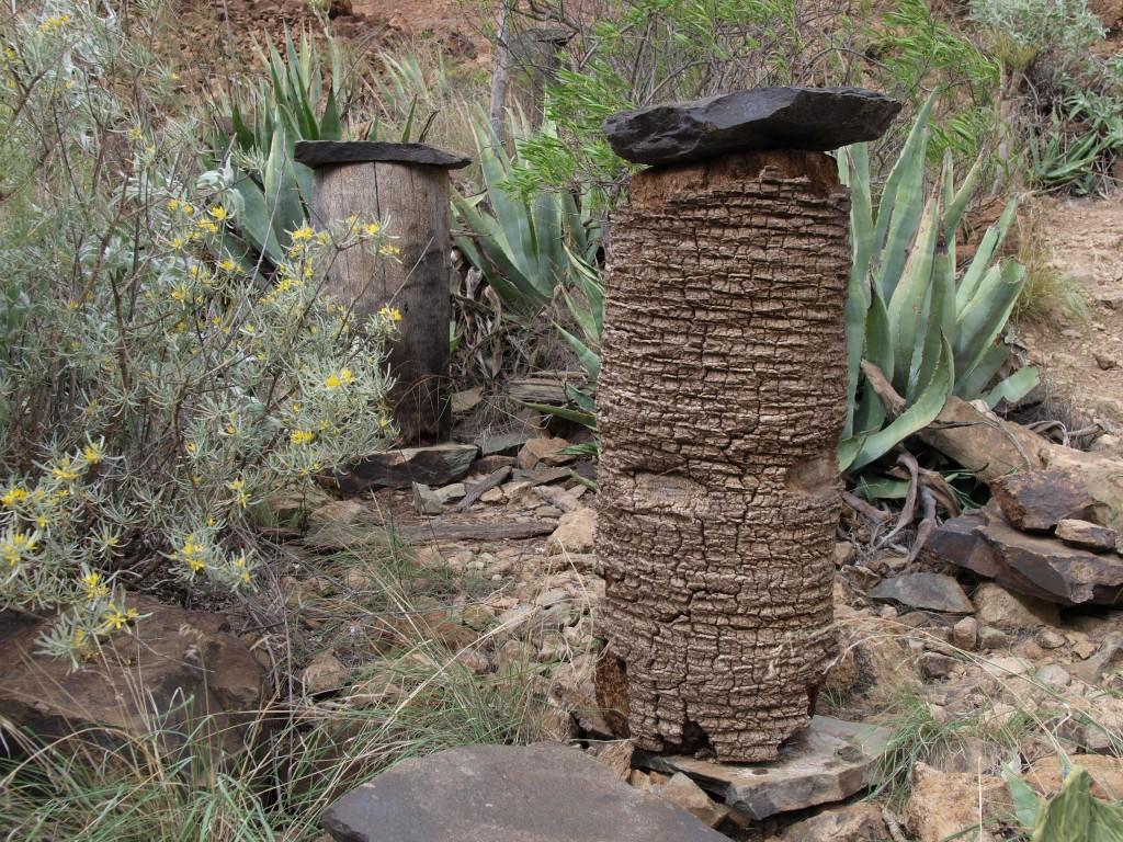 Historische Beuten aus ausgehöhlten Palmenstämmen, Höhe ca. 80 cm, Duchmesser ca. 40 cm. Als Abdeckung diente ein Stein, das sehr kleine Flugloch befand sich seitlich in der Mitte (zu besichtigen nahe der Nekropolis von Arteara)